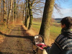 Kinderwagen auf Feldweg in der Sonne