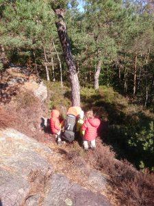 Kleiner Kraxel-Pfad zwischen Wald und Granit-Felsen