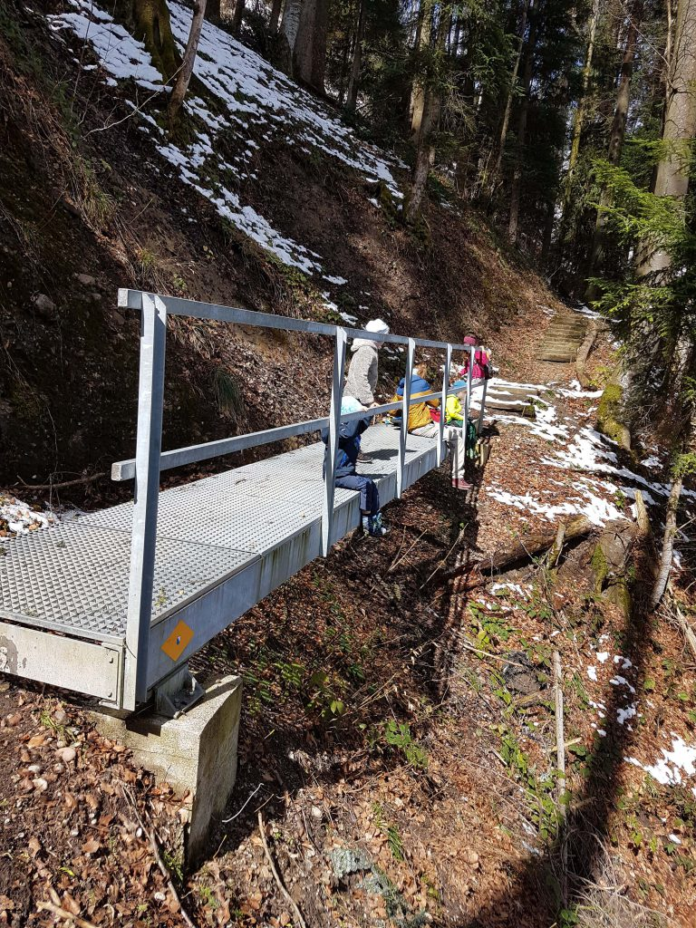 Ziemlich stabile Brücke im Wald - wir müssen in der Schweiz sein!